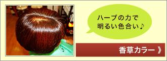 GON美容室 香草カラー